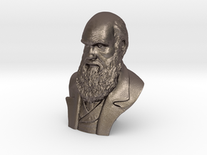 """Charles Darwin 6"""" Bust in Polished Bronzed Silver Steel"""