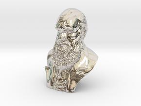 "Charles Darwin 2"" Bust in Platinum"