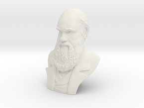 "Charles Darwin 12"" Bust in White Strong & Flexible"