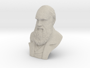 "Charles Darwin 12"" Bust in Natural Sandstone"