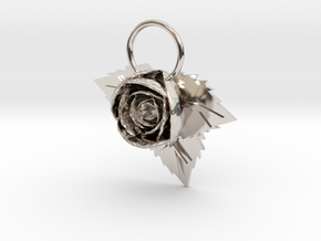 Rose in Platinum