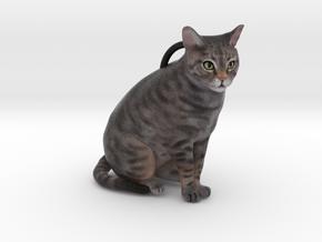 Custom Cat Ornament - Chillydog in Full Color Sandstone