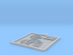 Einstein's hanging lithophane Meme in Smooth Fine Detail Plastic