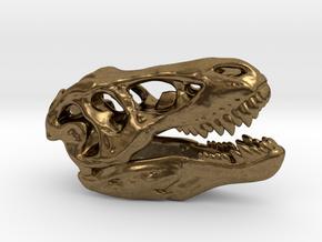 Tyrannosaurus Rex Skull 35mm in Raw Bronze