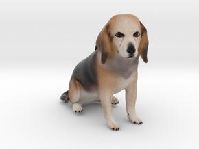 Custom Dog Ornament - Maggie in Full Color Sandstone