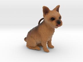 Custom Dog Ornament - Tigerlily in Full Color Sandstone