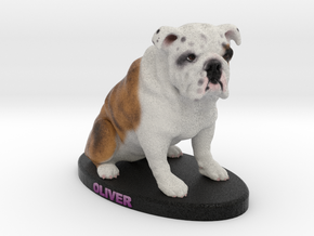 Custom Dog Figurine - Oliver in Full Color Sandstone