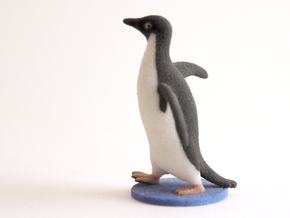 Socially Awkward Penguin in Full Color Sandstone