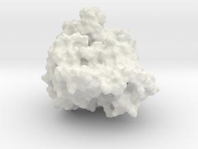 ERK2 in White Natural Versatile Plastic