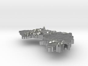 Guinea Terrain Silver Pendant in Raw Silver