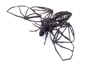 Death's Head Hawkmoth Skeleton in Black Strong & Flexible