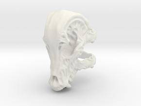 Beastskull_L in White Natural Versatile Plastic