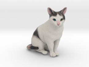 Custom Cat Figurine - Buttfuzz in Full Color Sandstone