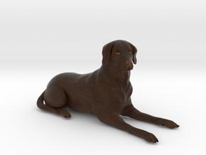 Custom Dog Figurine - Titus in Full Color Sandstone