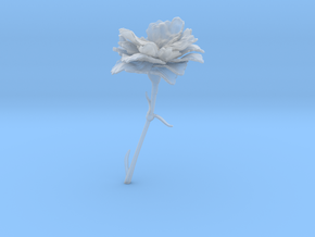 Carnation in Smooth Fine Detail Plastic