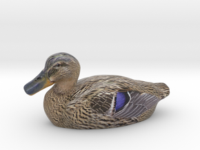Female Mallard - 1/25th Scale in Full Color Sandstone
