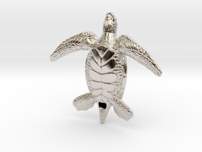 Sea Turtle in Rhodium Plated Brass