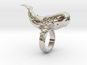 Sperm whale Ring  in Rhodium Plated Brass