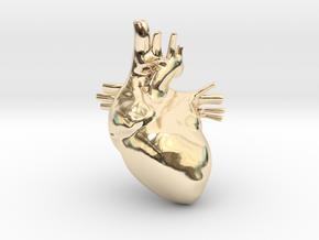 Anatomical Heart Hanger Pendant in 14K Yellow Gold