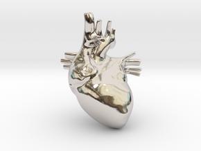 Anatomical Heart Hanger Pendant in Platinum