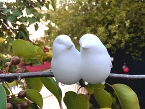 #BFF - Birdly feathered Friends in White Natural Versatile Plastic