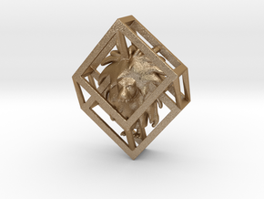 Wumpus in Hypercube Pendant in Matte Gold Steel