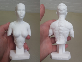 Female Bust Print 001 in White Processed Versatile Plastic