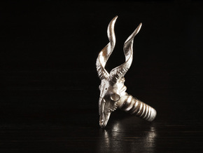 Antelope Ring in Natural Silver: 5 / 49