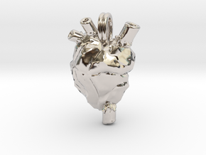 Anatomical Heart Jewelry Necklace  in Platinum