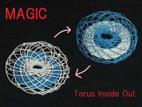 Torus Inside Out in White Natural Versatile Plastic
