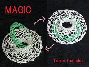 Torus Magic with Ring 2 in White Natural Versatile Plastic