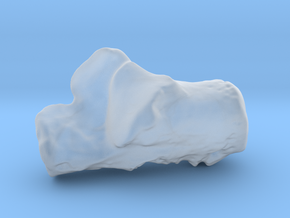 Human left calcaneus in Smoothest Fine Detail Plastic