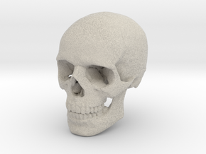 Skull in Natural Sandstone