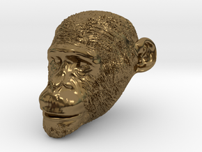 Head Chimp in Polished Bronze