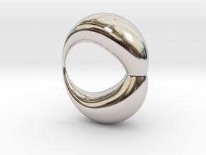 0053 Antisymmetric Torus (p=1.5) #002 in Rhodium Plated Brass