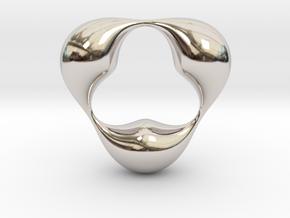 0056 Antisymmetric Torus (p=3.0) #005 in Rhodium Plated Brass