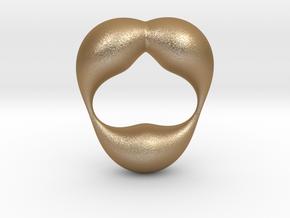 0055 Antisymmetric Torus  (p=2.5) #004 in Matte Gold Steel