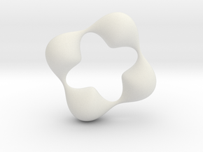 0057 Antisymmetric Torus (p=4.0) #006 in White Natural Versatile Plastic
