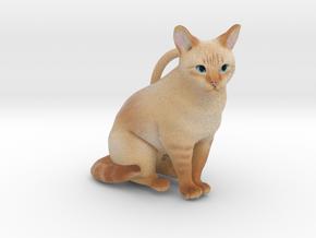 Custom Cat Ornament - Chantilly in Full Color Sandstone
