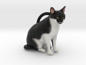 Custom Cat Ornament - Chocolate in Full Color Sandstone