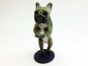 Take it Easy Brown Frenchie in Full Color Sandstone
