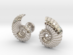 Nautilus Shell Cufflinks in Rhodium Plated Brass