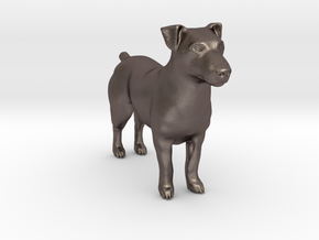 Jack Russell Terrier - Small in Polished Bronzed Silver Steel