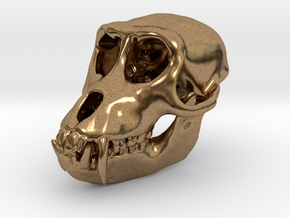 Macaque Rhesus Monkey Skull Pendant  in Natural Brass