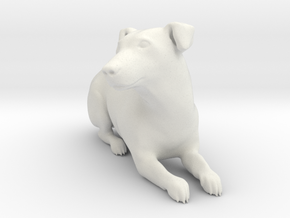 Laying Jack Russell Terrier 1 in White Natural Versatile Plastic