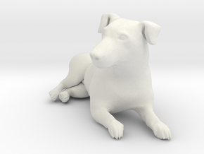 Laying Jack Russell Terrier 2 in White Natural Versatile Plastic