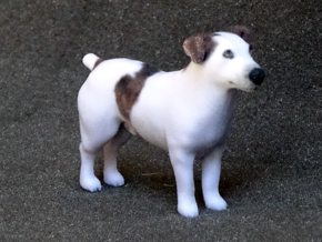 Brown Jack Russell Terrier in Full Color Sandstone