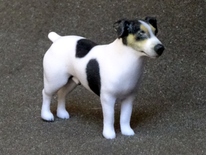 Standing Jack Russell Terrier in Full Color Sandstone