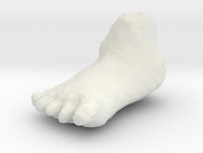 foot in White Natural Versatile Plastic