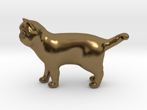 Standing Exotic Shorthair Cat in Polished Bronze